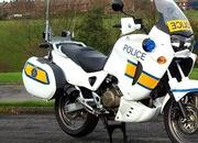 want to buy a police motorcycle going cheap... 4