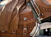 indian chief-278890
