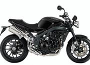triumph speed triple-349665