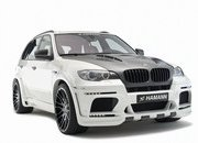 hamann flash evo m-381763