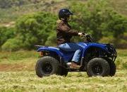 yamaha grizzly 125 automatic-422186