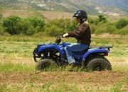 yamaha grizzly 125 automatic-422189