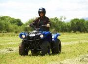 yamaha grizzly 125 automatic-422195