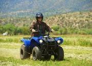 yamaha grizzly 125 automatic-422198